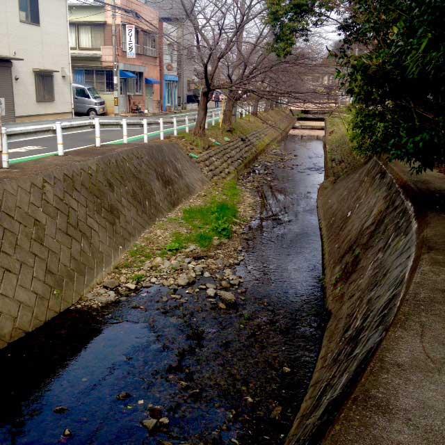 hachikokuyama1