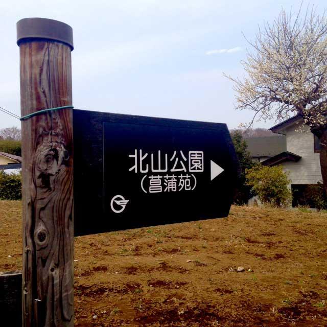hachikokuyama4