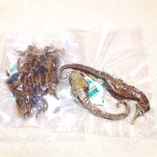 漢方の原材料に使用される極東蠍とタツノオトシゴ(海馬)