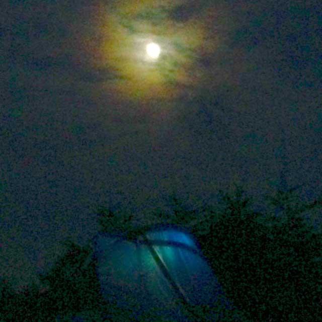 雲取山の登山写真「夜の月とテント」
