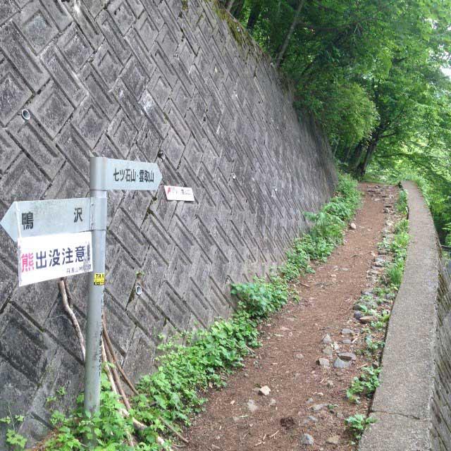 雲取山の登山写真「七ツ石山、雲取山登山道」熊出没注意