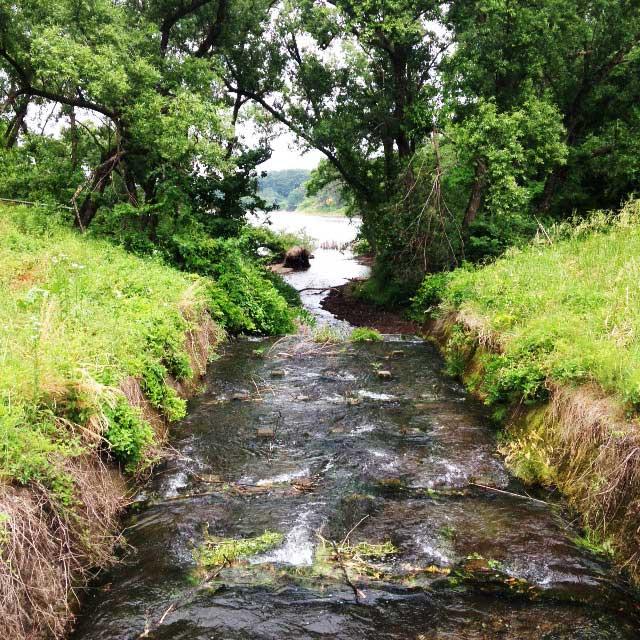 ムーミンパーク。宮沢湖散策。小川の風景