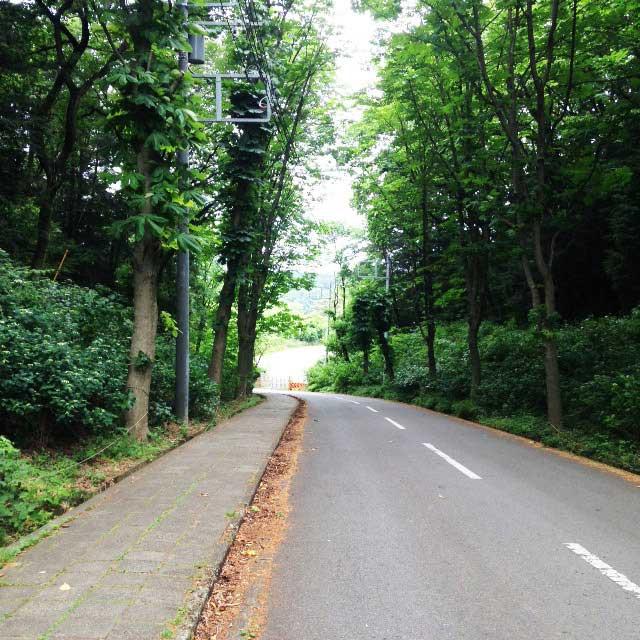 ムーミンパーク。宮沢湖散策。入口へ続く道