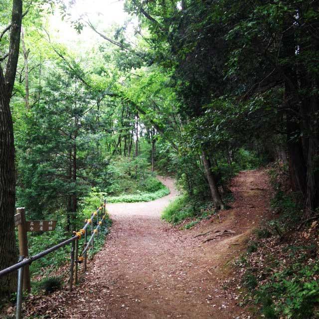 ムーミンパーク。宮沢湖散策。小道