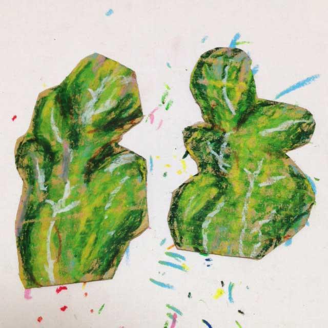 ルッコラ栽培とイラスト「オイルパステルで下書き2」