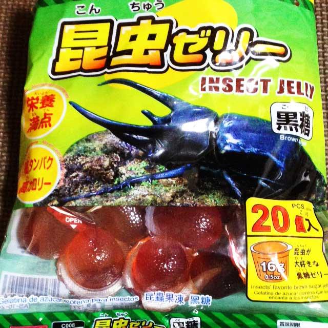 カブトムシ、クワガタを飼う「昆虫ゼリー」