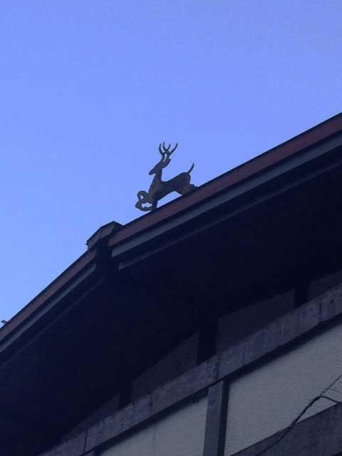 黒部・立山を歩く「立山駅の屋根」