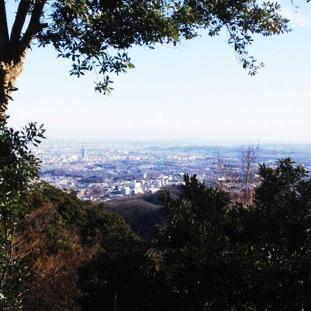 高尾山へ初詣「眺望」