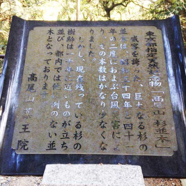 高尾山へ初詣「杉並木の説明」