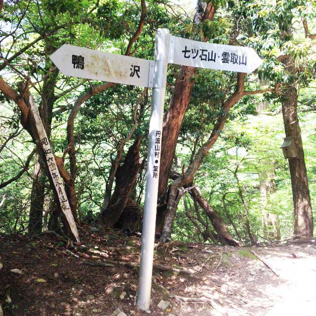 2017mの雲取山へ登る1「堂所」