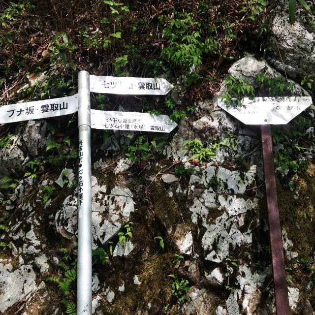 2017mの雲取山へ登る1「七ツ石山とブナ坂の分岐」