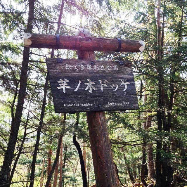 2017mの雲取山へ登る2「芋ノ木ドッケ」