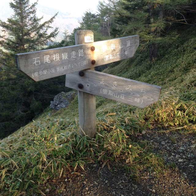 2017mの雲取山へ登る2「石尾根と巻き道分岐」