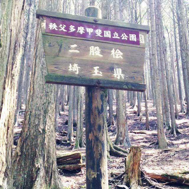 2017mの雲取山へ登る2「二股会」