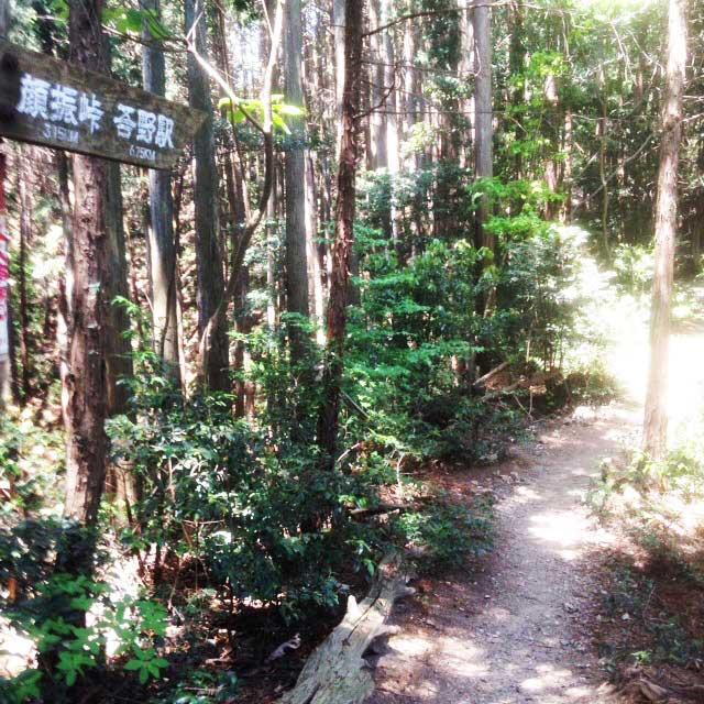 ユガテ、顔振峠、越上山を歩く「登山道」