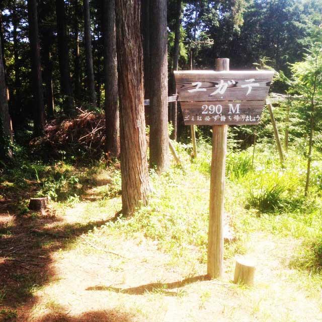 ユガテ、顔振峠、越上山を歩く「ユガテの標識」