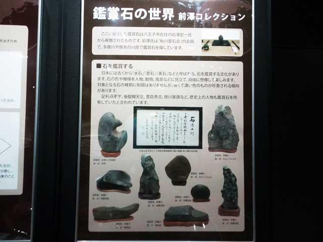 多摩六都科学館へ資料探し「鑑賞石」