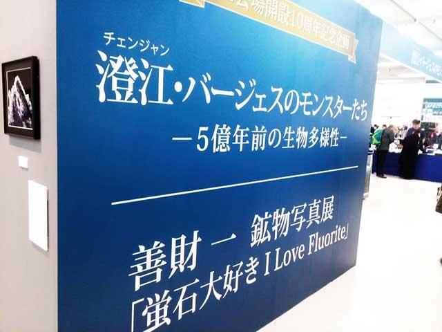 東京ミネラルショー2017へ行く「特別展示」