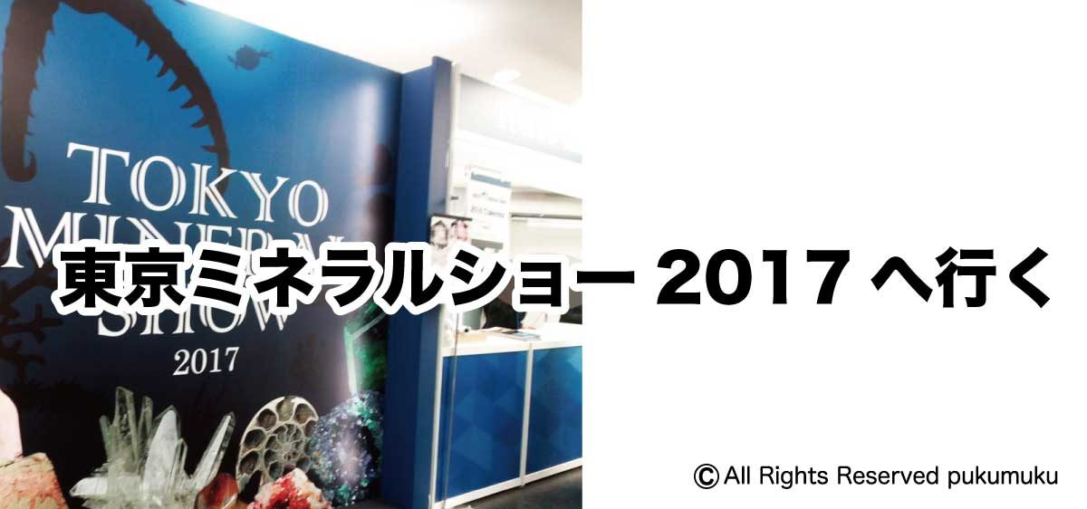 東京ミネラルショー2017へ行く