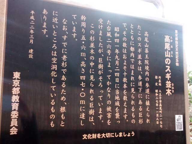 高尾山と599「杉並木の説明」