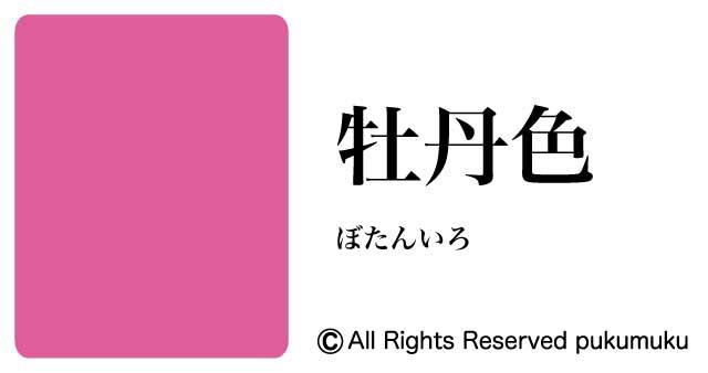 日本の色赤系「牡丹色」