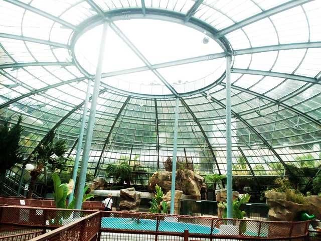 熱川バナナワニ園へ行く「屋根」