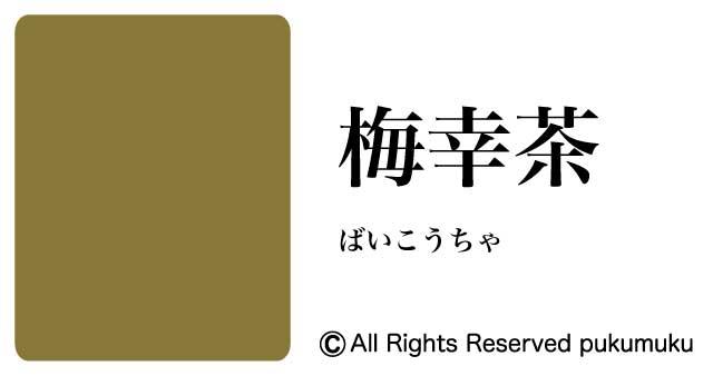 日本の色・黄・茶系の色「梅幸茶」