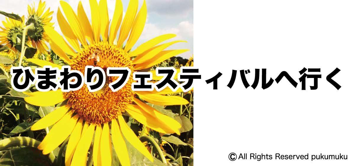 ひまわりフェスティバル2018へ行く