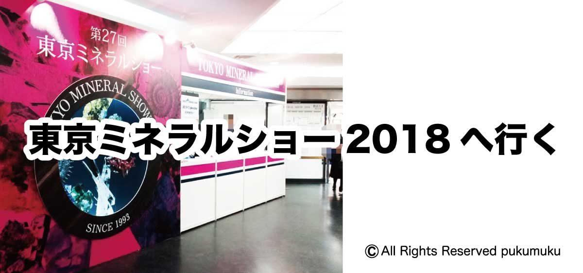 東京ミネラルショー2018へ行く