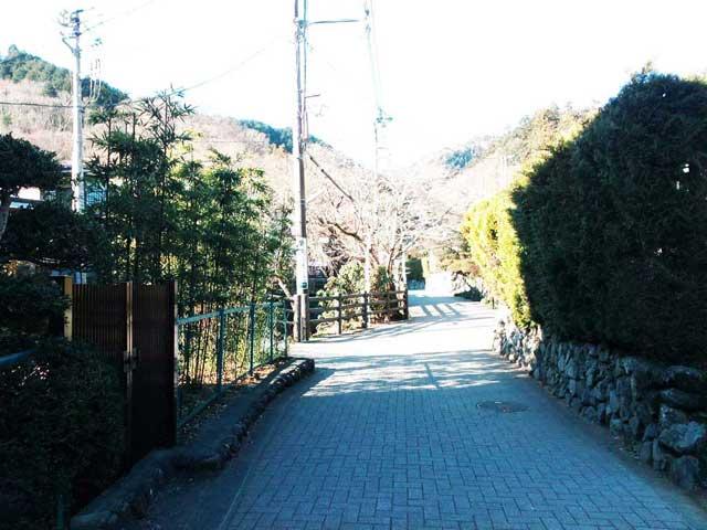 高尾山へ行く2019「高尾山へ向かう石畳」