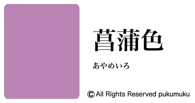 日本の色・紫系の色「菖蒲色(あやめいろ)」
