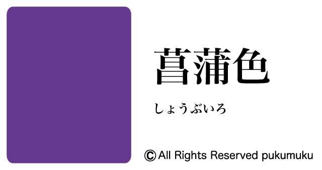 日本の色・紫系の色「菖蒲色(しょうぶいろ)」