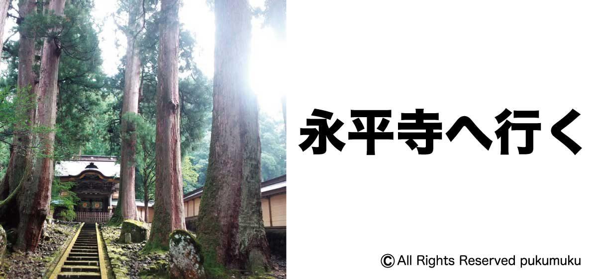 永平寺へ行く