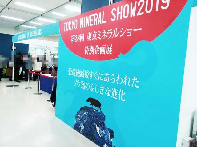 東京ミネラルショー2019へ行く「特別企画展」
