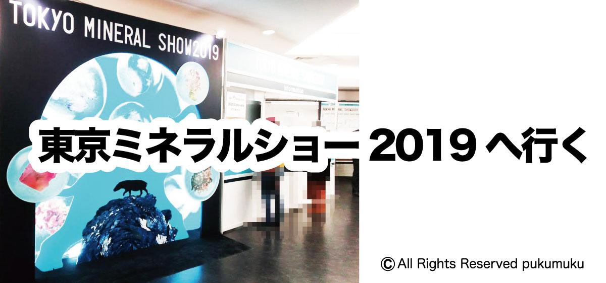 東京ミネラルショー2019へ行く